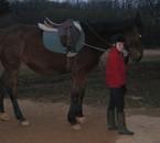 Encore ma meilleure amie avec un cheval