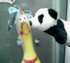 panda Kiss chicken