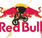 redbull down & dirty