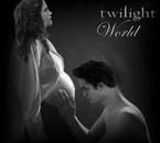 Edward & Bella enceinte