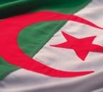 123vive algerie