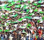 1 2 3 viva l'algérie !