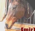 Emir (l)