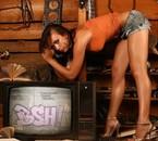 BSH VOL 2