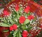 Le mie prima rose