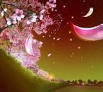 couleur fleur de cerisier