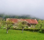 Mollens/ Pied du Jura/ Vaud/ © 2010