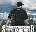 SCREDI GANG WEAR