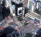 Lieu où je passerai sûrement le plus de temps Shibuya