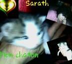 Mon chaton, Sarath.