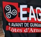 En avant Guingamp !!!