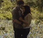 Edward & Bella Forever !!