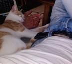 moi vek un chat