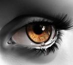 Un oeil en noir et blanc avec l'intéieur marron