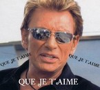 QUE JE T'AIME JOHNNY