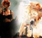 concert a bercy 2006