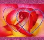 belle images de coeur scintillant et fleur