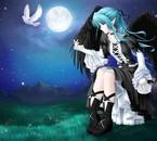Ange bleu aux ailes noires