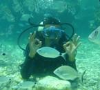 Plongé sous marinne ;)