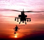 Tigers Helicopters + performant que l'apache