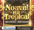 NOUVEL AN TROPICAL 2011