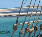 Voyage sur l'ile