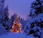 Je vous souhaite de bonnes fêtes de fin d'année, biz