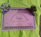 جوائز تقد&#1