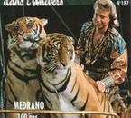 les tigres dresser