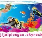 www.jijelplongee.skyrock.com
