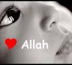 Allah Lee touut puissant !!