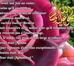 lLa Rose De L'Islam