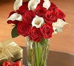 حين تتعطل لغة الكلام ، فالزهور... ع