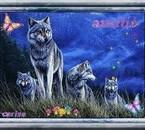 les loups sublime