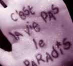 Cest la vie. :)