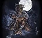 Présage de mauvaise augure,la traversée du désert de ce loup
