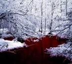 Et je me noie dans cette rivière de sang...