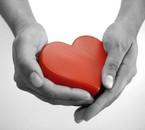 Je Donne Mon Coeur Pour celui Que J'aime