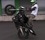 Stunt life...