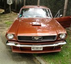 Ma Mustang 66.