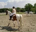 cheval au pas !!