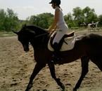 cheval au trot !!