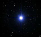 Sirius l'étoile la plus brillante du ciel visible en hiver.
