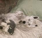 En plein sommeil, avec mon <<doudou>>
