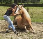 tout simplement pcq mon cheval c ma vie  !