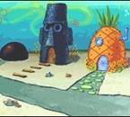 Sponge Bobbb *  (L)