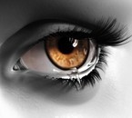 Séchez vos larmes ki ke vs soyez ALLAH EST GRAND