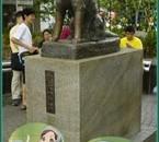 Les 2 Hachiko