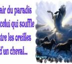 L'air du paradis, je le respire à tes côtés mon ange !!!