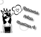 Charmante princesse recherche son prince charmant .